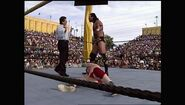WrestleMania IX.00023
