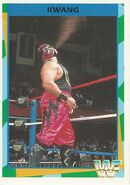 1995 WWF Wrestling Trading Cards (Merlin) Kwang 124