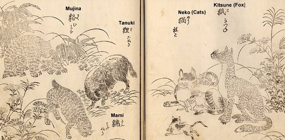 A mujina-tanuki-mami-kitsune-Y-600pxl-kinmouzui-18C-English-subtitles