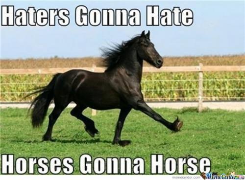 File:Horses-gonna-Horse c 146157.jpg