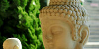 Schools of Buddhism