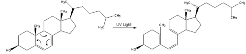 Reaction-Dehydrocholesterol-PrevitaminD3