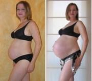 File:180px-Pregnancy comparison.jpg