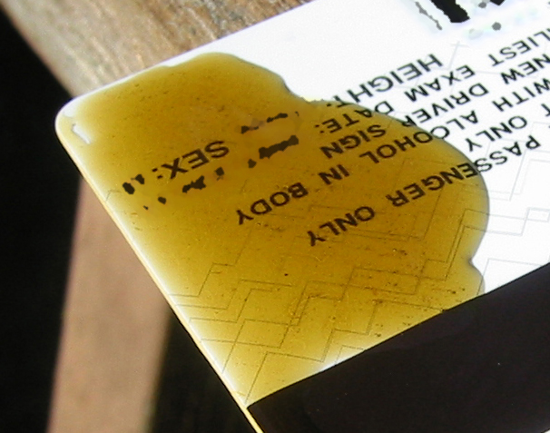 File:Golden Cannabis Oil.JPG
