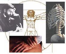 Chiropractic5