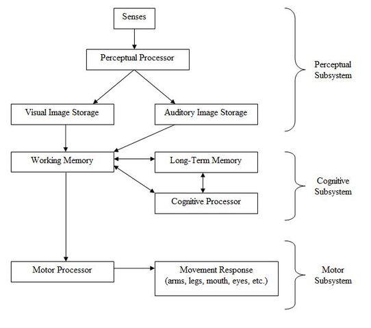 File:HumanProcessorModel.jpg
