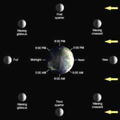 Lunar-Phase-Diagram