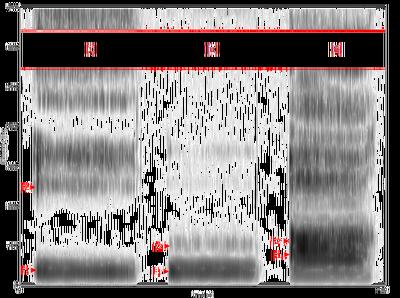 Spectrogram -iua-