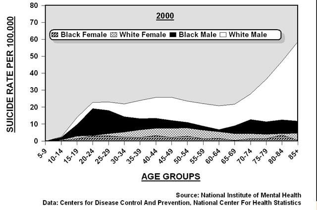File:Suicide rates in U.S. by gender and race (2000).jpg