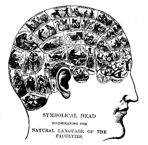File:Phrenologychart.png