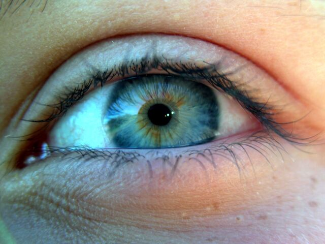 File:Closeup of an blue-green human eye.jpeg