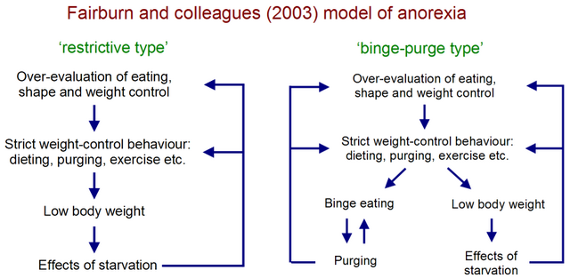 File:Fairburn et al Anorexia Model.png