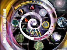 Biocomplexity spiral