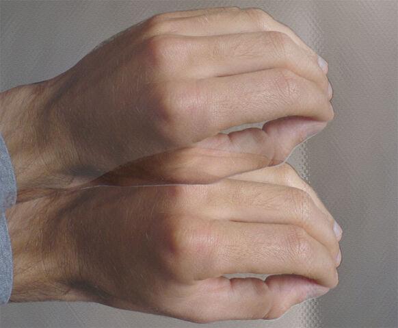File:Portugal Wanker Gesture.jpg