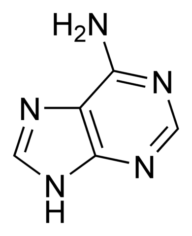 File:Adenine chemical structure.png