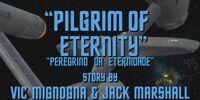 Peregrino da eternidade