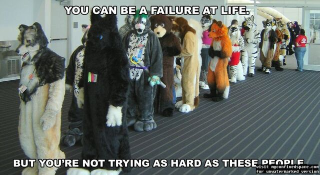 File:Furry-failure.jpg