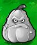 Squack