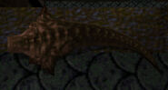 Scrag corpse
