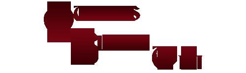File:Qb-wiki-logo-2.png