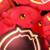 Rocher (Beast of True Crimson Eyes) Icon