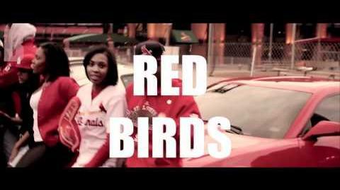 "SHORTY DA PRINCE ""BIRDS"" OFFICIAL MUSIC VIDEO! St. Louis Cardinals 2011 World Series Song"