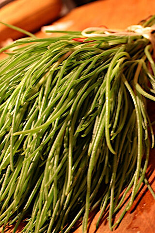 File:Monks beard.jpg