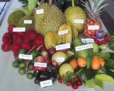 Fruitpage4