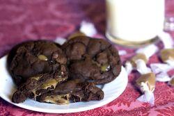 Saltedcaramelcookie