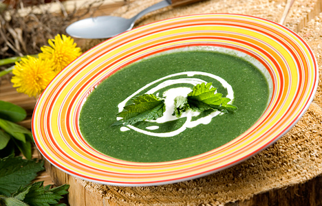 File:Nettle soup.jpg