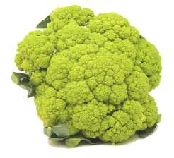 File:Broccoflower.jpg