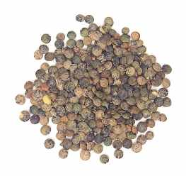 File:French green lentils.jpg