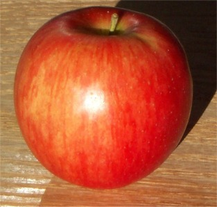 File:YorkImperialApple.jpg