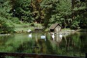 Izvor rijeke Bosne, BIH