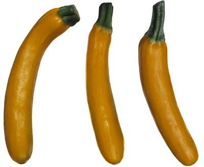 File:Yellow summer squash.jpg