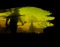 Thumbnail for version as of 15:07, November 27, 2011