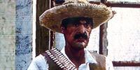 Paco Baldenegro