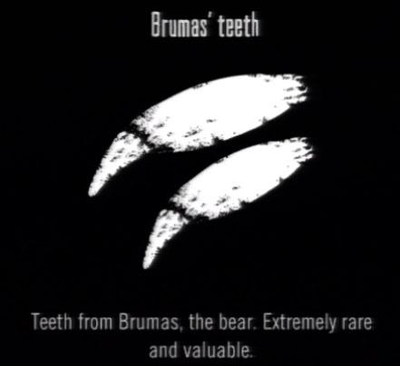 File:Animals Brumas Teeth.jpg