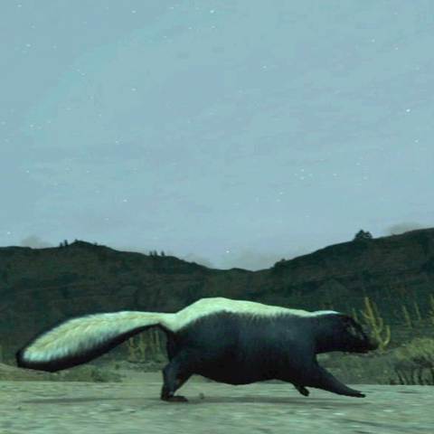 File:Skunk-by-Armadillo-01.png