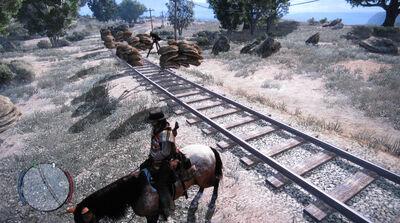 Rdr train glitch03