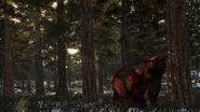 Rdr undead bear02