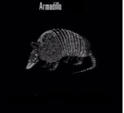 File:250px-Animals Armadillo Carapace.jpg