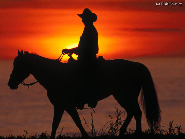 File:Santa-Cruz-Cowboy,-California.jpg