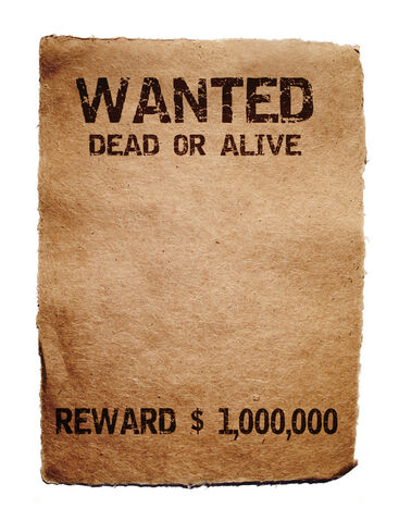 File:Wanted1.jpg
