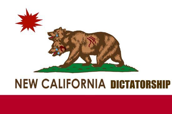 1720972-ncr flag