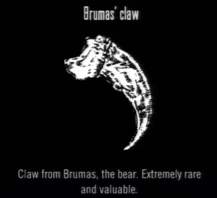 File:Animals Brumas Claw.jpg