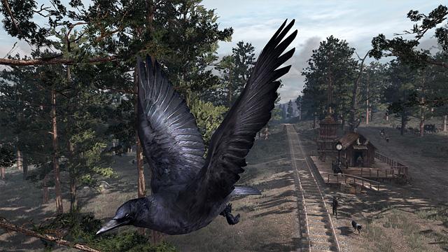 File:Wildlife.crows.jpg
