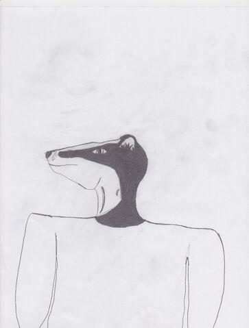File:Random Badger Portrait.jpg
