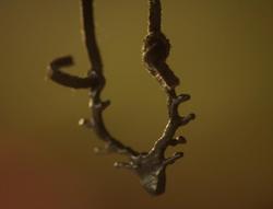 Pagan Necklace