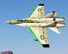 GLRF Fulcrum Icon